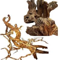 Wurzeln und Holz