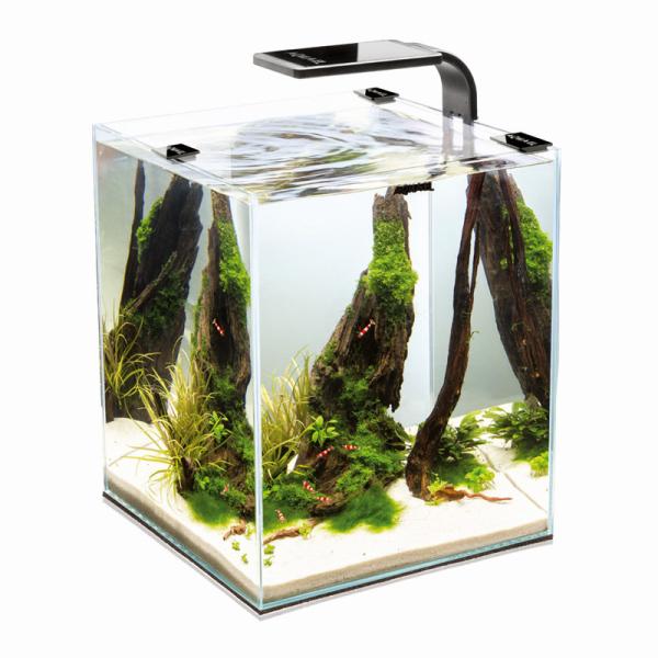 AquaEl Shrimp Set 2 10 Liter schwarz