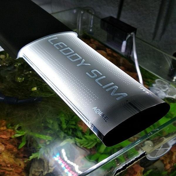 AquaEL LEDDY Slim Duo Sunny+Plant 10 Watt