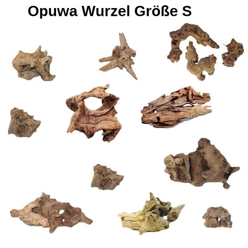 OrinocoDeco Opuwa Wurzel Größe S 10-25 cm