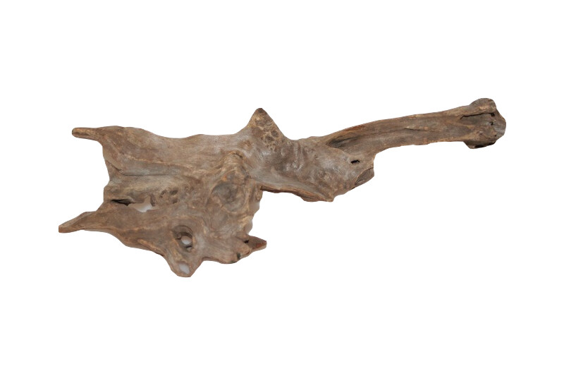 OrinocoDeco China Drift Wood S 10-30 cm
