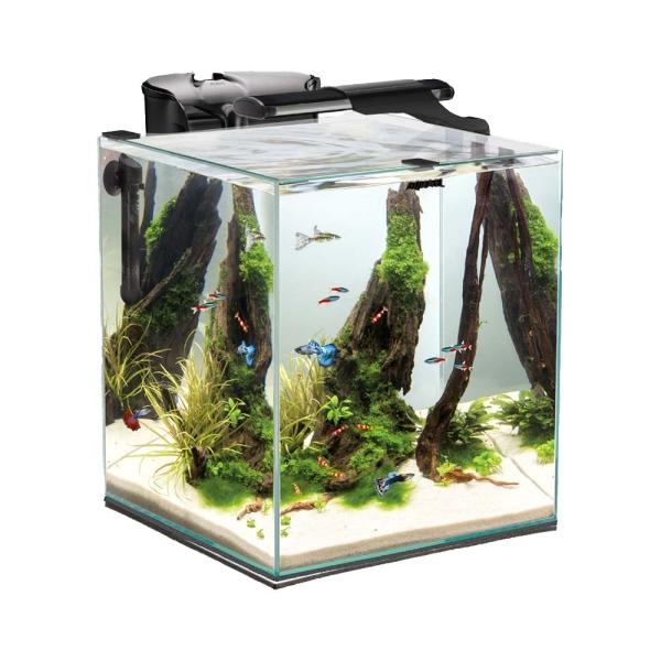 AquaEL Shrimp Set Duo 49 l schwarz