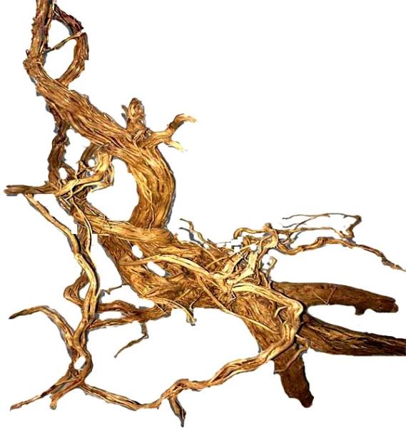 OrinocoDeco Mystery Wood 40-60 cm