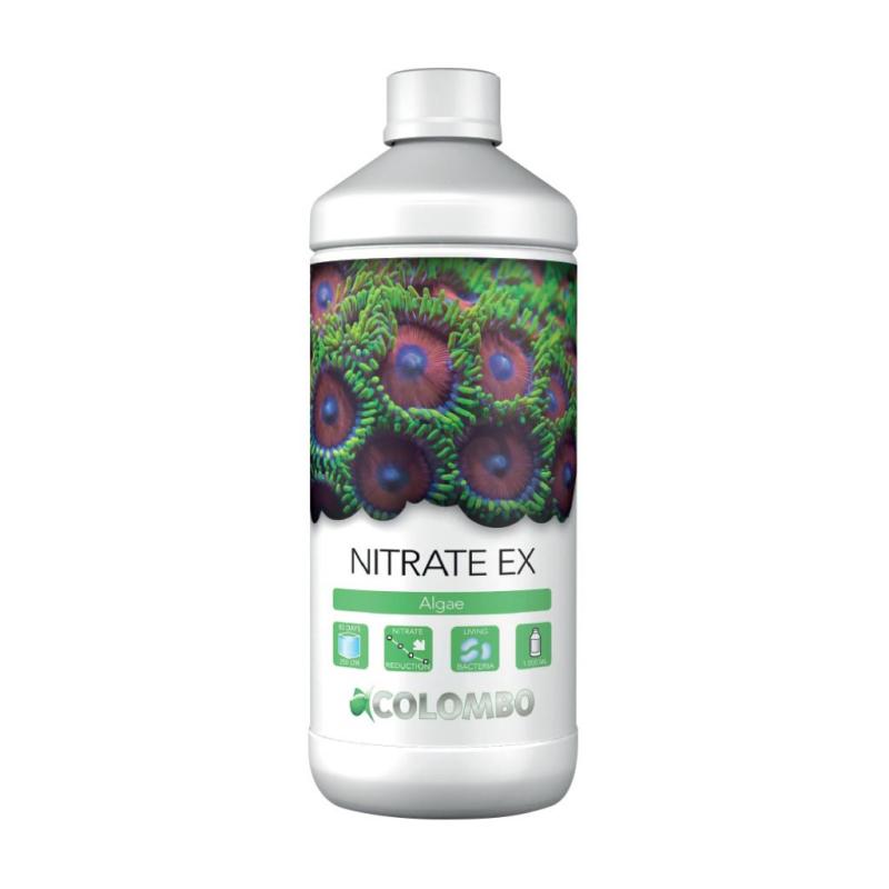 COLOMBO MARINE NITRATE EX